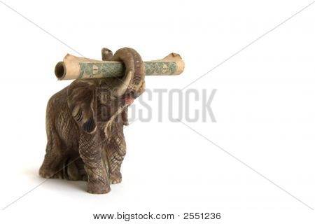 Elephant & Dollar