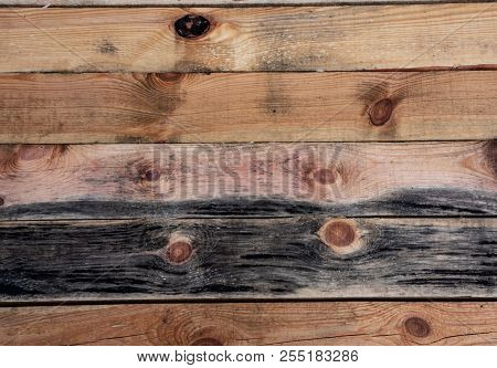 Wooden Pine Background From A Close-up Of Wet Boards