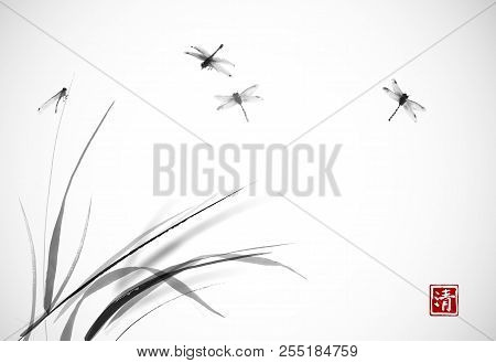Dragonflies Flying Over The Grass. Traditional Oriental Ink Painting Sumi-e, U-sin, Go-hua. Hierogly