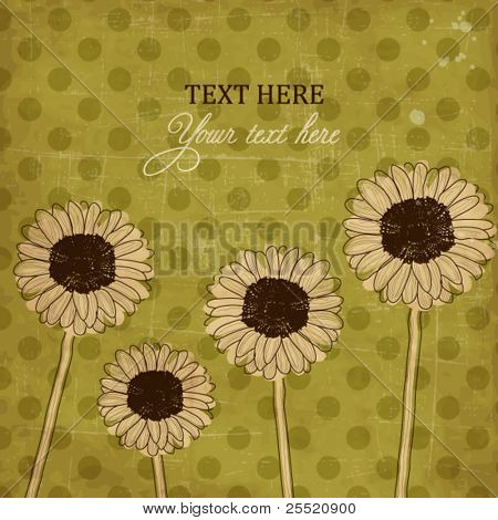 Vintage postcard with Gerbera Daisy flowers