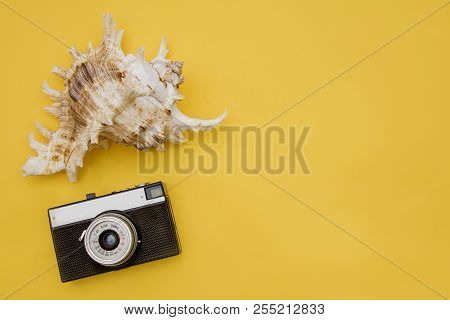 From A Trip To The South - Camera And Shell Abstract Shape