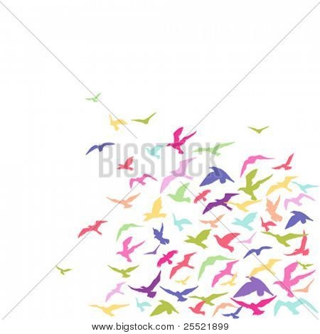 Vector colorful background of a birds' flock