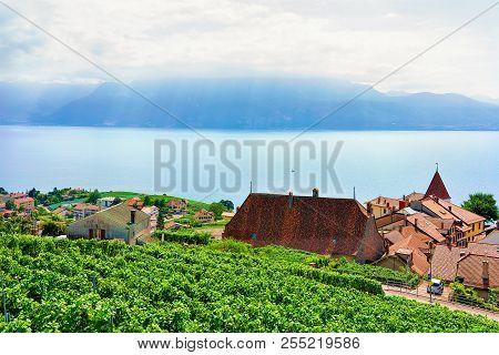 Lavaux, Switzerland - August 30, 2016: Landscape Of Lavaux Vineyard Terraces Hiking Trail, Lake Gene