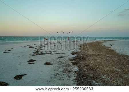 Beautiful Beach Along Sanibel Island At Sunset