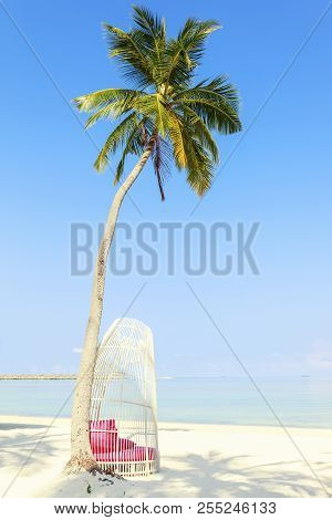 White Tropical Chair Under Palm Trees On Perfect Tropical Beach, Tropical Holiday Concept , Maldives