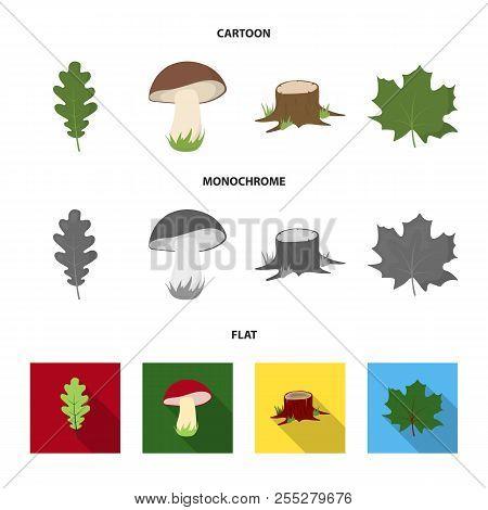 Oak Leaf, Mushroom, Stump, Maple Leaf.forest Set Collection Icons In Cartoon, Flat, Monochrome Style
