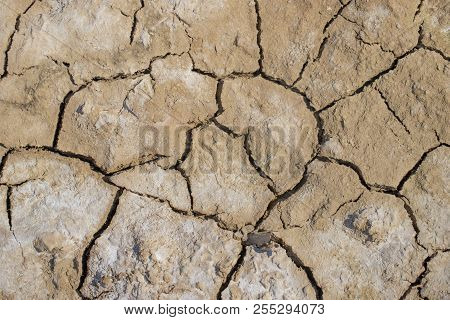 Surface Of The Dried Earth Covered With Salt. Ecology Concept Of Wasted Land And Water Resources.