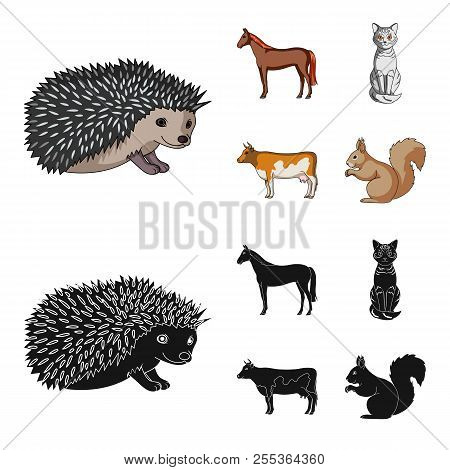 Horse, Cow, Cat, Squirrel And Other Kinds Of Animals.animals Set Collection Icons In Cartoon, Black
