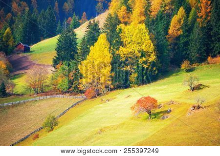 Scenic View Of Alpine Pasturage In Picturesque Mountain Valley At Sunny Autumn Day