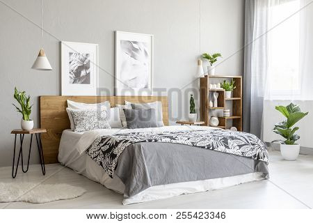 Patterned Blanket On Wooden Bed In Grey Bedroom Interior With Plants And Posters. Real Photo