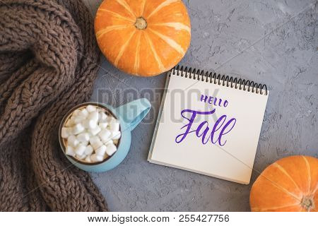 Autumn Background With Warm Knitted Scarf, Blue Mug With Coffee, Hot Chocolate, Cocoa, Marshmallow,