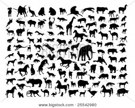 Animals silhouettes isolated on white. Vector illustration.