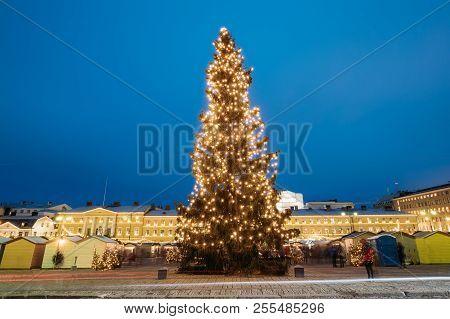 Helsinki, Finland. Evening View Of Christmas Tree On Senate Square In Evening Night Christmas Xmas F