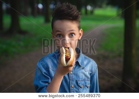 A Young Boy Takes A Bite Of A Hot Dog