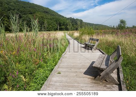 A Place To Rest On The Appalachian Trail On The Boardwalk In Pawling, Ny.