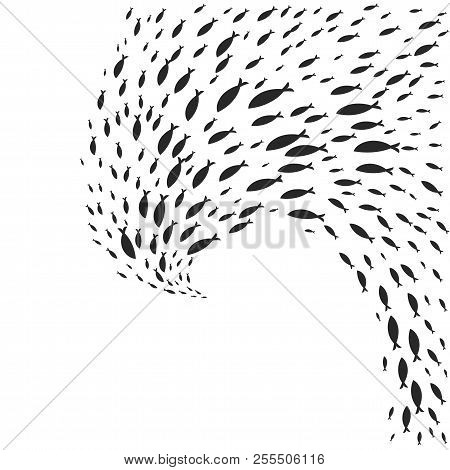 Vector Spiral Shoal Of Black Silhouette Of Fish Swimming Isolated On Whit Background