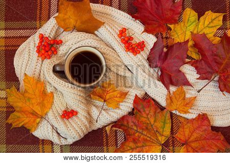 Coffee, Scarf And Autumn Leaves On Warm Brown Plaid. Autumn Flat Lay.