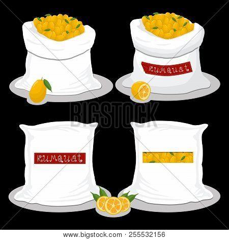 Vector Icon Illustration Logo For Bags Filled With Fruit Kumquat, Storage In Sacks. Kumquat Pattern