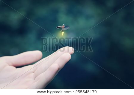 Firefly flying away from a child's hand, shallow focus on hand, motion blur on firefly
