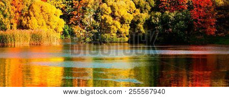 Beautiful Autumn Park With Colourful Leaves, Trees And Water. Autumn Landscape.park In Autumn. Fores