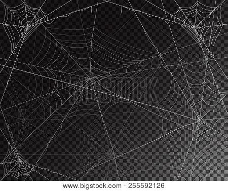 Black Transparent Background For Halloween With Spider Webs, Illustration.