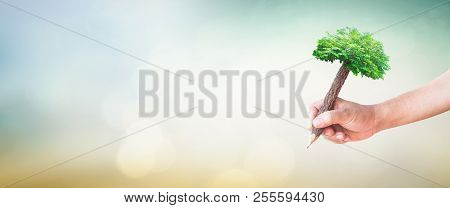 World Environment Day Concept: Student Hand Holding Pencil Of Tree And Writing On Green Meadow Over