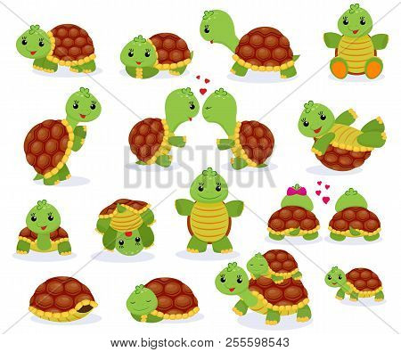 Turtle Vector Cartoon Seaturtle Character Swimming In Sea And Playing Tortoise In Tortoise-shell Ill