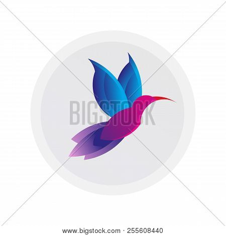 Colorful Hummingbird Sign. Simple Colibri Logo. Drawing Of Animal Fly. Vector Illustration. Spa And
