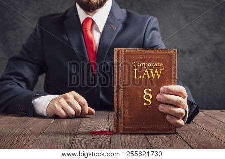 Lawyer Shows Statute Book Of Law In Corporations.