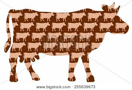 Cow Cattle Pattern. Silhouettes Of Cows Background. Isolated Vector On White Background.