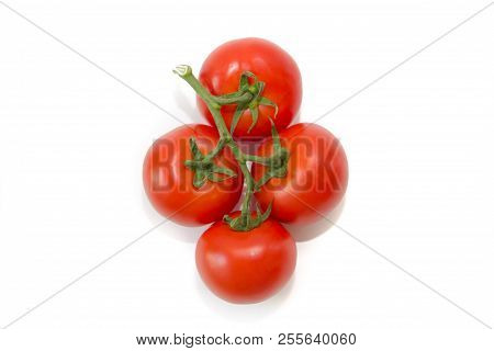 Tomatoes On A Branch Isolated On White Background. Vegetables On A White Background. Food . Healthy