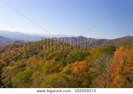 Mountain Range In Autumn Colors, Fall Leaves, Great Smoky Mountains, Clear Sky, Horizontal Aspect