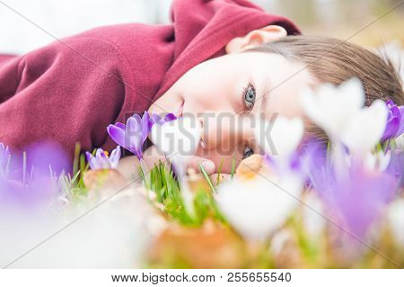 Boy Admires The Flowering Crocuses. Portrait Of Beautiful Kid With Crocuses Flowers Outdoors