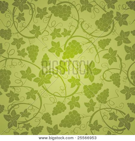 Vine seamless background, vector illustration