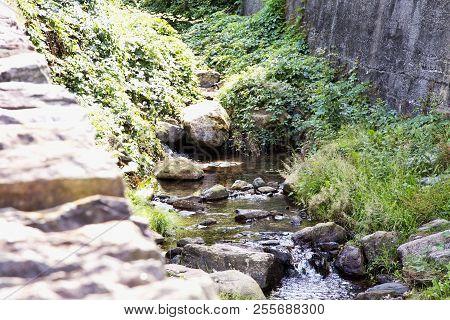 Flowing Stream Between The Stones