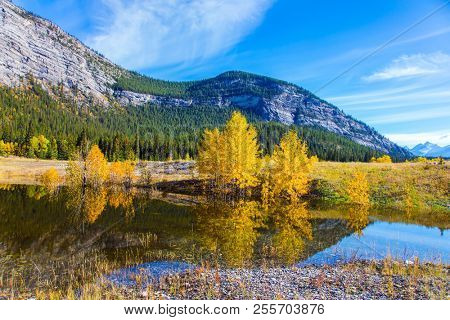 Rocky Mountains of Canada are reflected in the smooth water of Lake Abraham. Indian Summer in the Rockies. Concept of ecological and active tourism