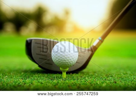 Golf Course Green And Golf Ball Close In The Grass Field