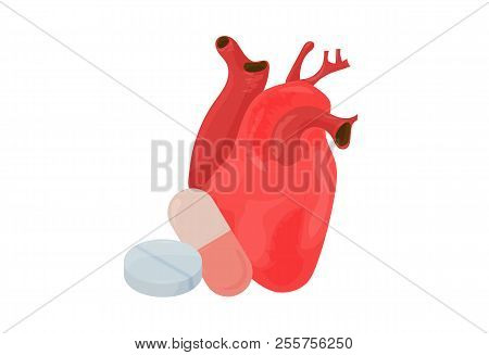 Cardiology And Heart Treatment Vector Illustration: Anatomical Heart Organ With A Pill And A Capsule