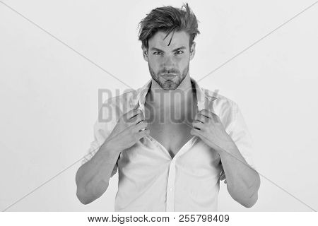 Guy With Bristle In Pink Shirt And Messy Hair. Macho Unfastens Button. Man With Confident Face Isola