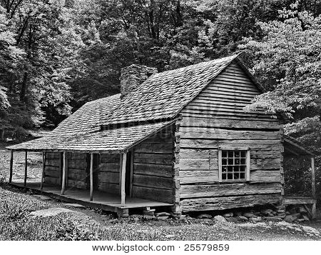 Black & White log cabin in Smoky Mountains
