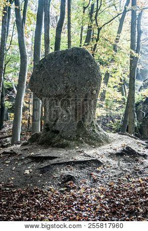 Isolated Snadstone Rock In Autumn Forest In Sulovske Skaly Mountains Near Stefanikova Vyhliadka In S