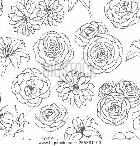 Vector Seamless Pattern With Lily, Chrysanthemum, Camellia, Peony And Rose Flowers Line Art On The W