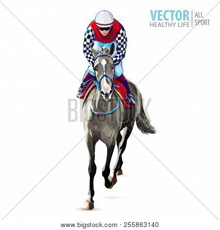 Jockey On Horse. Champion. Horse Racing. Hippodrome. Racetrack. Jump Racetrack. Horse Riding. Racing
