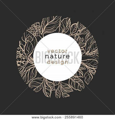 Vector Template Design Organic Plant Symbol Nature Card Of Mate Tree Art Line Style Narural Leaves,