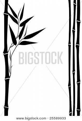 frame from bamboo silhouettes