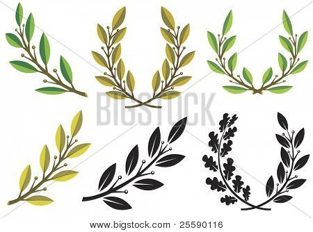 Set of laurel wreaths and branches