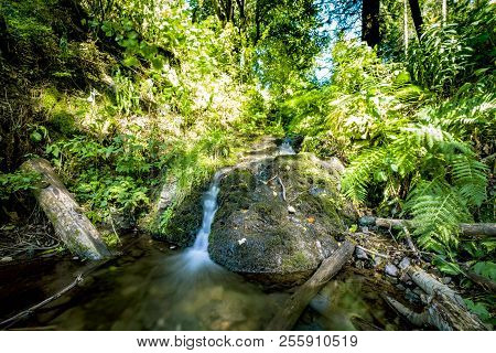 Small Waterfall In A Green Forest In The Summer With Water Running Smoothly