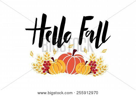 Hello Fall - Hand Drawn Lettering Phrase With Harvest Symbols. Harvest Fest Poster Design. Autumn Fe