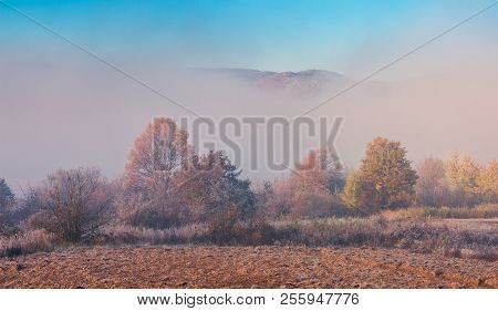 Thick Fog In The Valley. Trees In Fall Foliage. Top Of The Mountain Seen In The Distance