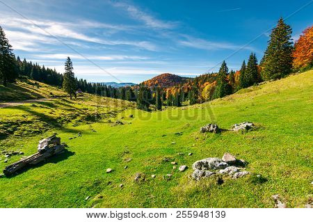 Autumn Landscape Of Apuseni National Park. Beautiful Scenery With Fall Colored Forest And Distant Mo